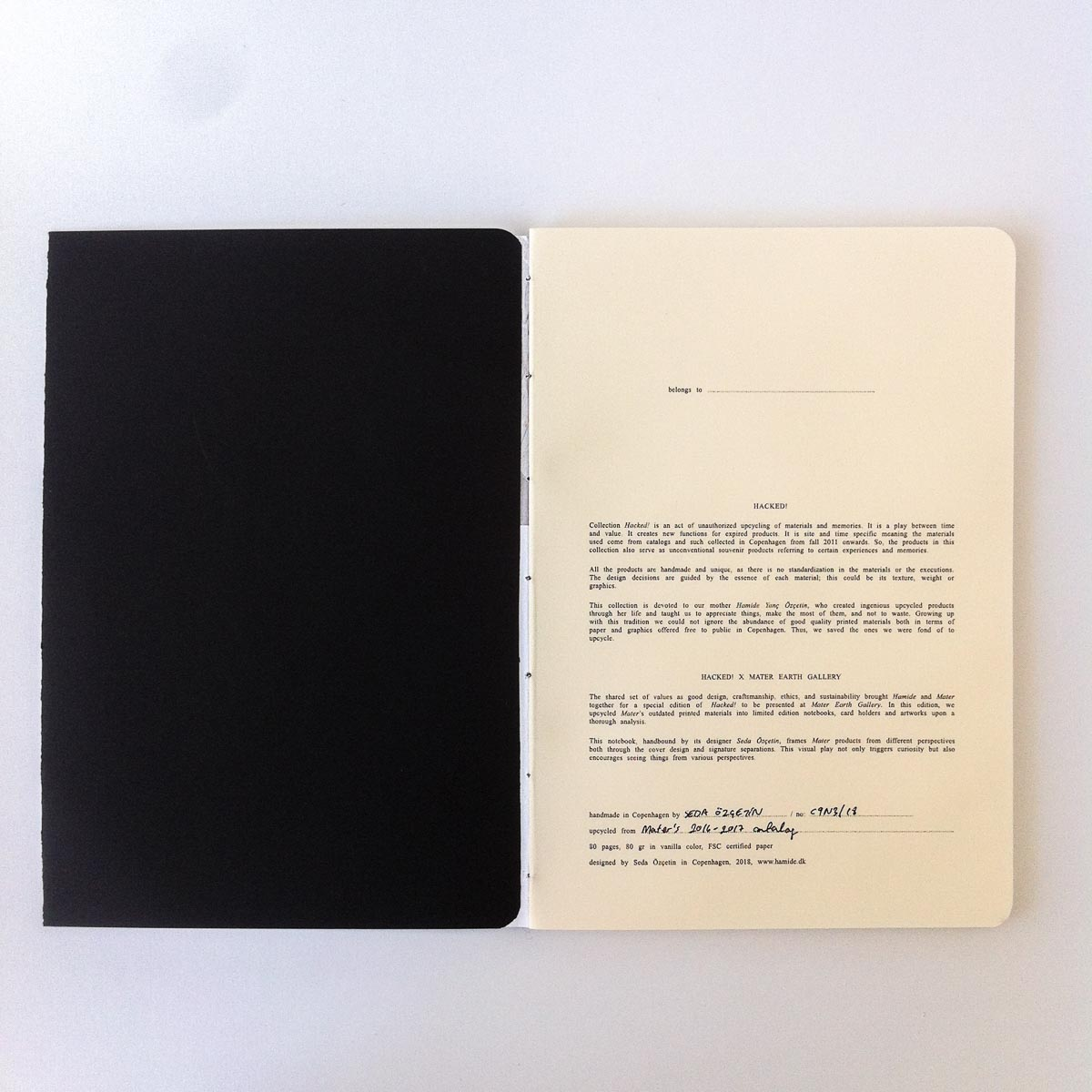 """Introduction page of the """"Hacked!"""" notebooks for Mater Earth Gallery"""